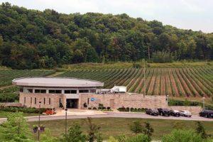 ナイアガラカレッジ・ワイン醸造