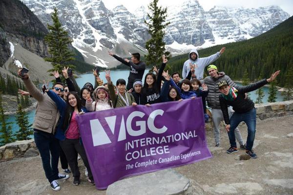 VGCのメイン画像